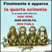 la quinta scimmia meme